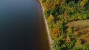 Volo sopra il lago e la foresta all'autunno stock footage