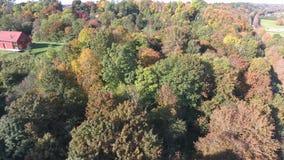 Volo sopra il parco di autunno stock footage