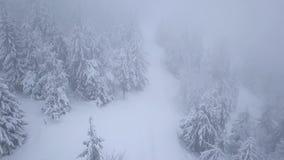 Volo sopra la bufera di neve in una foresta di conifere nevosa della montagna, tempo poco amichevole scomodo di inverno archivi video