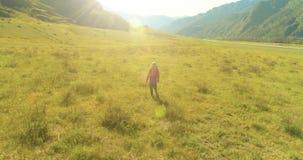 Volo sopra lo zaino che fa un'escursione turista che cammina attraverso il giacimento verde della montagna Valle rurale enorme al stock footage