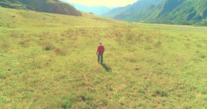 Volo sopra lo zaino che fa un'escursione turista che cammina attraverso il giacimento verde della montagna Valle rurale enorme al video d archivio