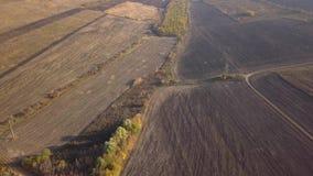 Volo sopra terreno arabile agricolo stock footage