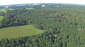 Volo sul paracadute autoalimentato sopra la foresta e campo in Bielorussia La vista dal livello Punto di vista, tenuto in mano archivi video