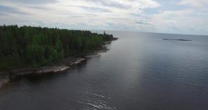 Volo superiore lungo la banca di silvicoltura del lago con acqua d'increspatura stock footage