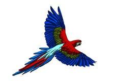 Volo variopinto di Arara Fotografie Stock Libere da Diritti