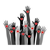 Volontärbegreppet med händer av olika hudsignaler med hjärta gömma i handflatan in arkivfoto