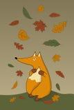 Volpe di autunno Fotografia Stock