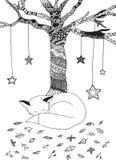 Volpe ed albero sonnolenti Fotografia Stock Libera da Diritti