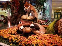Volpi del giardino floreale immagini stock