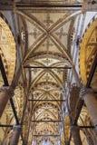Volte della basilica del san Anastasia a Verona Immagine Stock