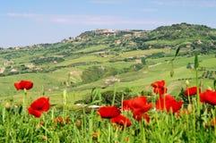 Volterra lizenzfreies stockfoto