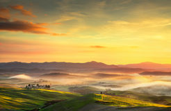 Volterra foggy panorama, rolling hills and green fields on sunse Stock Photos