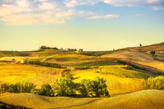 Volterra panorama, rolling hills, trees and green fields at suns. Volterra panorama, rolling hills, trees, and green fields at sunset. Tuscany Italy, Europe Stock Image