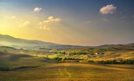 Volterra panorama, toczni wzgórza, drzewa i zieleni pola przy słońcami, zdjęcia stock