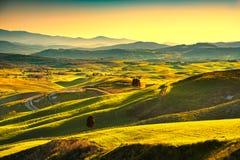 Volterra panorama, toczni wzgórza, drzewa i zieleni pola przy słońcami, zdjęcie royalty free