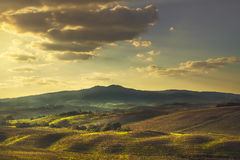 Volterra, Rolling Hills sur le coucher du soleil Horizontal rural zones vertes Photographie stock libre de droits