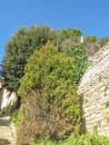 Volterra Tuscany, Italien Arkivfoto