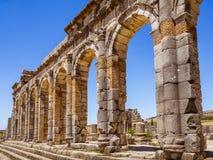 Volubilis站点在摩洛哥 免版税库存图片