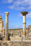 Volubilis罗马帝国废墟  库存照片