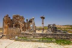 Volubilis är en romersk stad i Marocko nära Meknes Arkivfoto