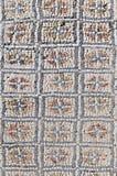volubilis του Μαρόκου Αφροδίτη σπιτιών περιγύρου Στοκ φωτογραφία με δικαίωμα ελεύθερης χρήσης