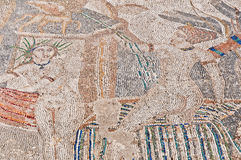 volubilis του Μαρόκου Αφροδίτη σπιτιών περιγύρου Στοκ εικόνα με δικαίωμα ελεύθερης χρήσης