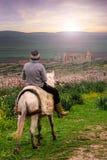 Volubilis в Marocco стоковое изображение