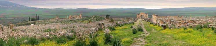 Volubilis в Marocco стоковая фотография rf