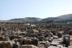 volubilis города старые римские стоковое изображение rf