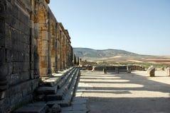 volubilis города старые римские стоковые фотографии rf