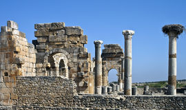 Volubilis images libres de droits