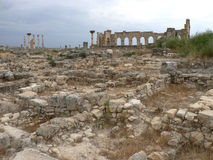 Volubilis Royaltyfri Bild