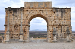 Volubilis Stock Image