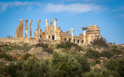 Volubilis Photos stock