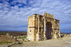 Volubilis Royalty Free Stock Photos