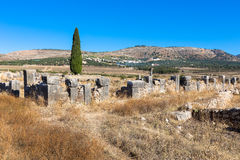 Volubilis is the best preserved Roman site in Morocco. Volubilis is a Roman city in Morocco situated near Meknes. It was declared a UNESCO World Heritage Royalty Free Stock Photography