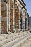 Volubilis Capitol Royalty Free Stock Images