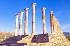 Volubilis, città romana nel Marocco Fotografia Stock Libera da Diritti