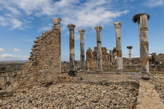 Volubilis dans Marocco Photo stock