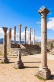 Volubilis em Marocco Fotografia de Stock Royalty Free
