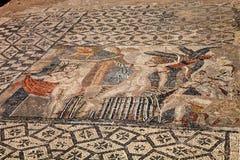 Volubilis - fördärvar av historisk stad från ålder av roman välde, Marocko Arkivfoton