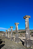 Volubilis, Maroc Photo stock