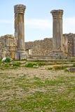 volubilis in Marokko Afrika das alte römische Monument und der Standort Stockfotografie