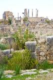 volubilis in Marokko Afrika der alte römische Standort Stockbilder