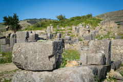 Volubilis, Morocco (4) Royalty Free Stock Images