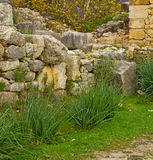 Volubilis in morocco africa the old roman deteriorated monument Stock Images