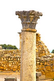 Volubilis in morocco africa the old roman deteriorated monument Royalty Free Stock Image