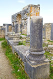 Volubilis in morocco africa the site Stock Photos