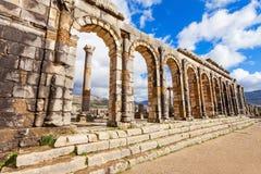 Volubilis in Morocco. Volubilis near Meknes in Morocco. Volubilis is a ruined Amazigh, then Roman city in Morocco near Meknes, UNESCO World Heritage Site Stock Image