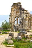 Volubilis in morocco  old roman deteriorated   and site Stock Photo